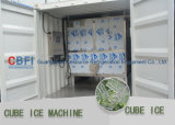 3 ton van de Machine van het Ijsblokje voor Eetbaar