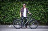 쇠사슬 알루미늄 합금 6061 자전거 샤프트 드라이브 여행 자전거