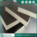 La formación de hormigón y construcción de contrachapado de madera contrachapada/encofrado de madera contrachapada