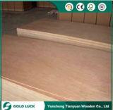 1220x2440mm álamos Bintangor comercial o de muebles de madera contrachapada Okoume