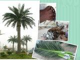 Künstliche Pflanzenbäume Hebei-Tengyang hergestellt in China
