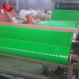 Membrane de imperméabilisation de polyéthylène/panneau embrévé d'évacuation de Geomembrane