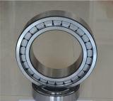 Doppelte Reihen-volle Ergänzungs-zylinderförmige Rollenlager für Öl-Pumpe Nnf 5020