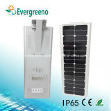 Bester Preis für integrierten Solar-LED-Garten/Straßenlaterne