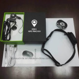 Multifuctional Pet Tracker GPS avec collier