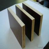 Toda la clase de película hizo frente a la madera contrachapada, madera contrachapada 1250*2500*9-21m m de la construcción