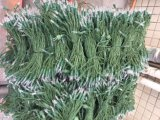 شجرة خيط خفيفة [لد] مع لون متعدّد ([تل01])