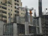 Zelf-Beklimt van het Merk van Dawin China van Saintyol Beroemde Concrete Plaatsende Boom op Verkoop