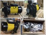 Messing-Antreiber der HF-zentrifugaler elektrischer Wasser-Pumpen-1.5kw/2HP