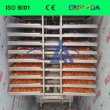 Handelsfrost-trocknende Maschine für Frucht, Gemüse, Fleisch, Nahrung