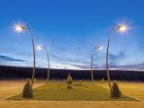 Гальванизированный и уличный свет Поляк порошок Coated для сбывания