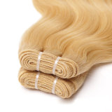 사람의 모발은 Ombre 색깔 머리 씨실을 묶는다