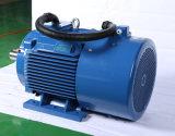 Soem-Dreiphasenbewegungspreis, HochleistungsElectricmotor für Verkauf