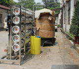 맛없은 염분 물 염분제거는 바닷물 정화기 역삼투 필터 10m3/H를 제거한다