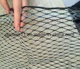 Protection des cultures de haute qualité plastique blanc Anti Bird Net