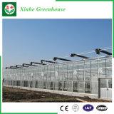 De Serre van het Gehard glas van de Moestuin van de Landbouw van China