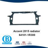 Het Comité 64101-1r300 van de Tank van het Water van de Steun van de Radiator van het accent 2015