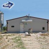 De geprefabriceerde Loodsen van de Slachtkuikenbedrijven van de Kip van het Frame van het Staal/Van de Landbouw van het Gevogelte met Automatische het Voeden Apparatuur in Senegal