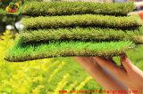 Естественная смотря синтетическая лужайка сада травы для заднего двора