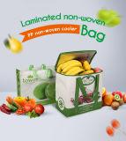 昇進の安い習慣PPの非編まれたスーパーマーケットのショッピング・バッグ