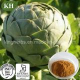 Extracto natural Cynarin el 5% de la alcachofa del 100% ULTRAVIOLETA; 4:1; 10:1