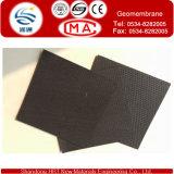 Double HDPE Geomembrane de point de fléau utilisé pour le mien