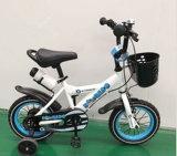 대중적인 아이들 신체 단련용 실내 고정 자전거