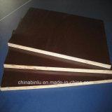Construction를 위한 18mm Film Faced Plywood Phenolic Board