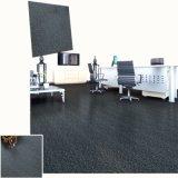 Revestimento seco do vinil do PVC da parte traseira do tapete do ambiente