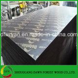 madera contrachapada impermeable de la cara de la película de 18m m para el mercado norteamericano/el material de construcción