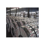 Bande de tôles laminées à froid en acier galvanisé avec revêtement de zinc haute