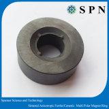 Em forma de anel anisotrópica magneto de ferrite para Personalizado do rotor do motor