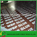 Venta caliente más barato Fenólico marrón de pegamento de madera contrachapada de cara de la película
