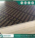 Madera contrachapada marina impermeable 4X8 de las ventas del álamo del encofrado de la melamina caliente de Plex