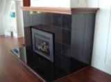 De elegante Zwarte Open haard /Fireplaces van de Plak van het Graniet