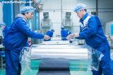 Металлизированная полиэстровая пленка использующ для гибкий упаковывать