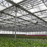 Парник листа PC для расти Agricutural