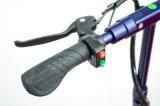 Motociclo elettrico pieghevole favorevole all'ambiente della scheda di librazione 2017