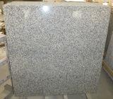 De grijze Plak van het Graniet van de Plak van het Graniet G439 Goedkope
