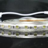 5050 LEIDEN SMD Licht met Hoog Lumen en 2 Jaar van de Garantie