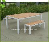 여가 플라스틱 나무를 가진 옥외 가구 뜰 탁자 그리고 벤치