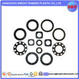 Junta de plástico O-Ring de alta qualidade Quatlity OEM