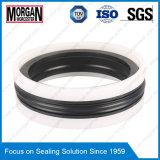 Das/anello di chiusura del pistone del cilindro idraulico serie di Tpm/Kgd