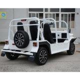 Автомобиль электрической кареты двигателя туристской Sightseeing