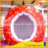 판매 (AQ52222)를 위해 팽창식 천막을 광고하는 딸기 모양