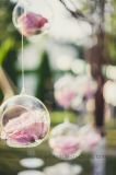 Manera casera moderna que cuelga el florero hidropónico de la boda de la flor de los bulbos