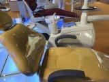 Heißes verkaufenqualitäts-Screen-Cer-anerkanntes zahnmedizinisches Gerät mit LED-Fühler-Licht-Lampe