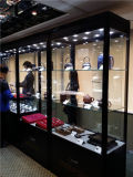 Faltendes Glasschrank-System für Ausstellung und Kunst-Vorgang