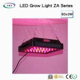 LED de elevada quantidade de luz crescer com reóstato e Timer (com lente)