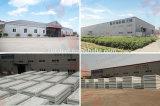 nuove 20FT case di lusso europee moderne del contenitore di 40FT